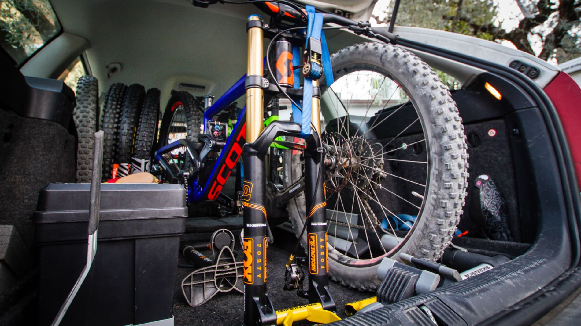 bikeinside innenraum fahrradtr ger fahrradtransport im. Black Bedroom Furniture Sets. Home Design Ideas